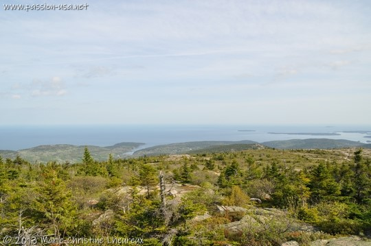 Acadia National Park, view from Cadillac Mountain