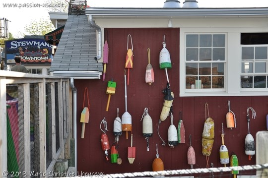 Bar Harbor, lobster trap buoys, color code by family