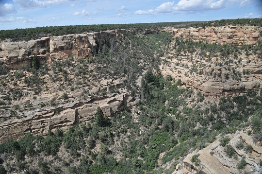 Canyon in Mesa Verde National Park