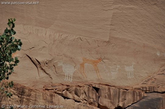 Hopi paintings, Canyon de Chelly