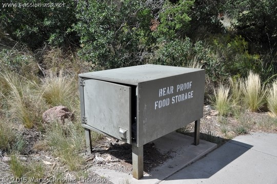 Bear-proof food container, Lost Mine Trail, Chisos Basin, Big Bend National Park
